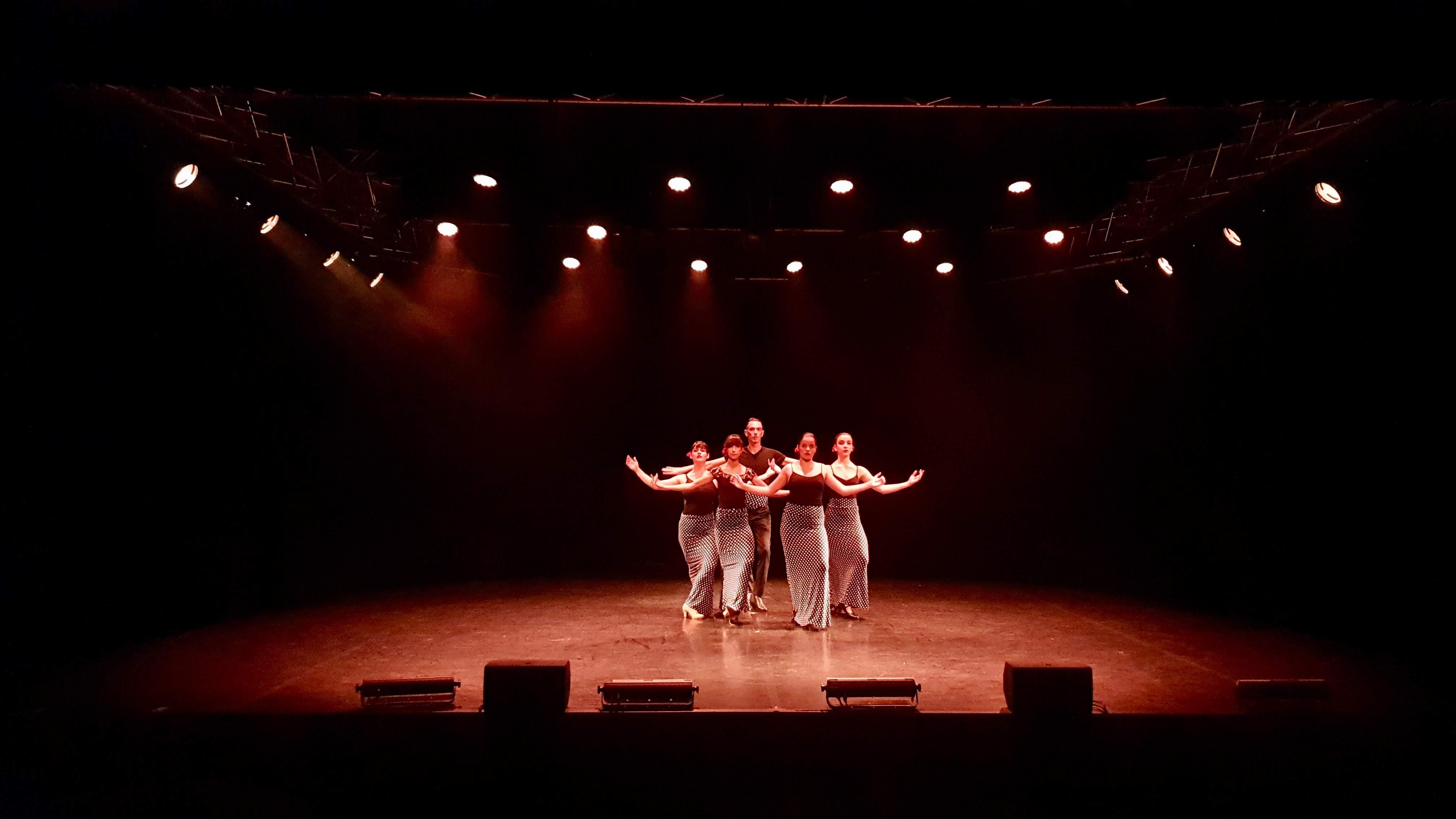 Photo 30 - Flamenco (1)